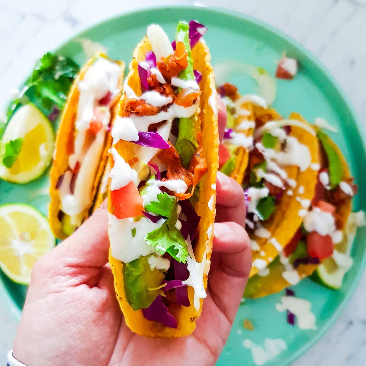 vegan jackfruit taco filled with pulled jackfruit meat