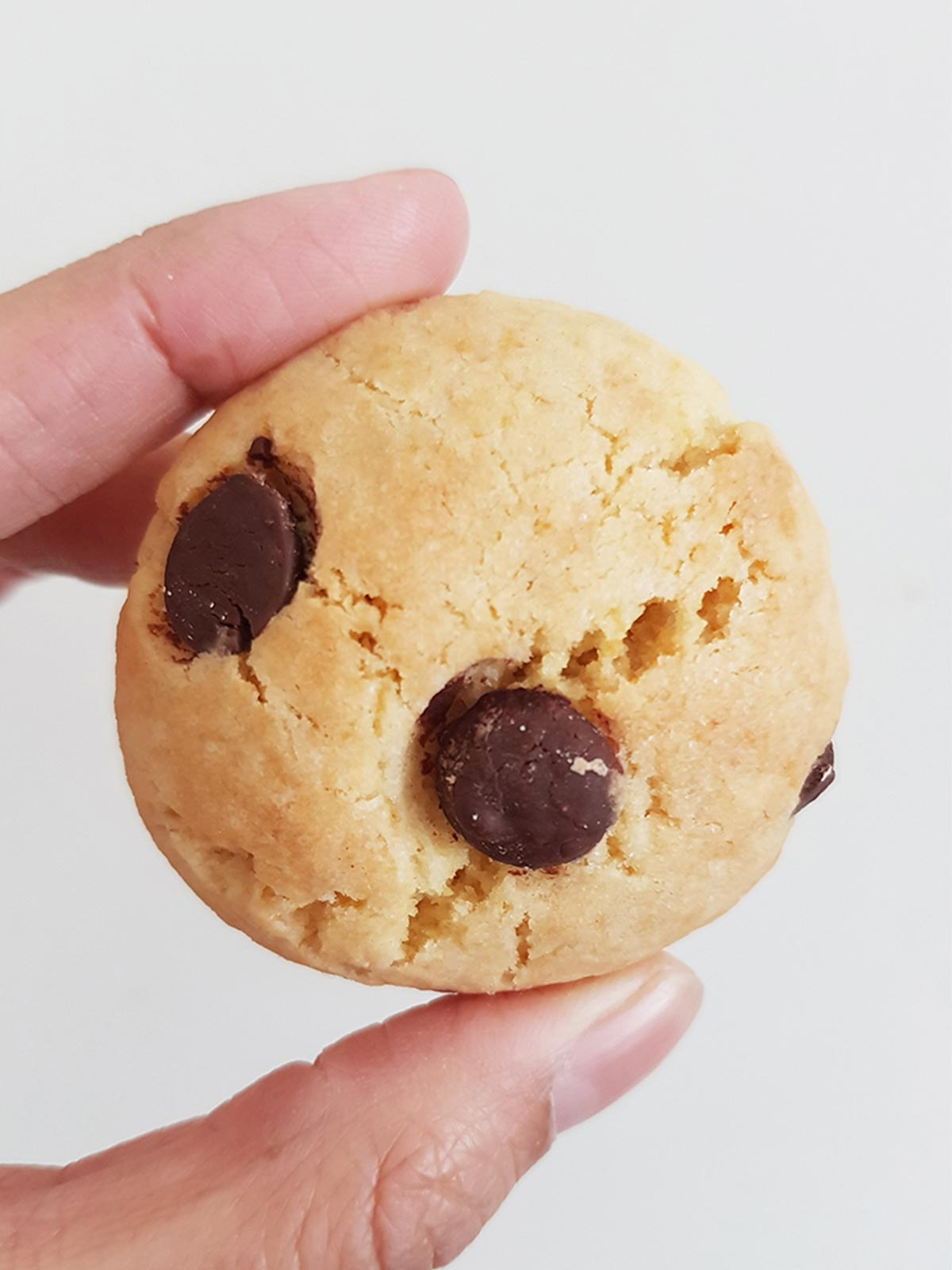 eggless chocolate chip cookies in hand