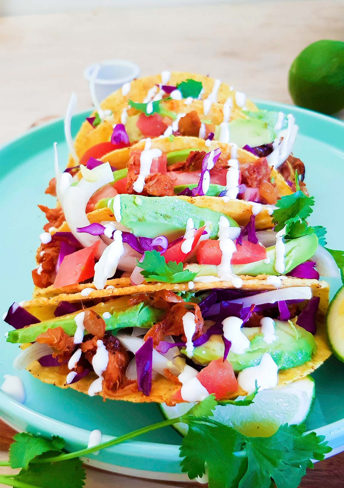 Hard shell tacos filled with pulled jackfruit meat, avocado,and cabbage.