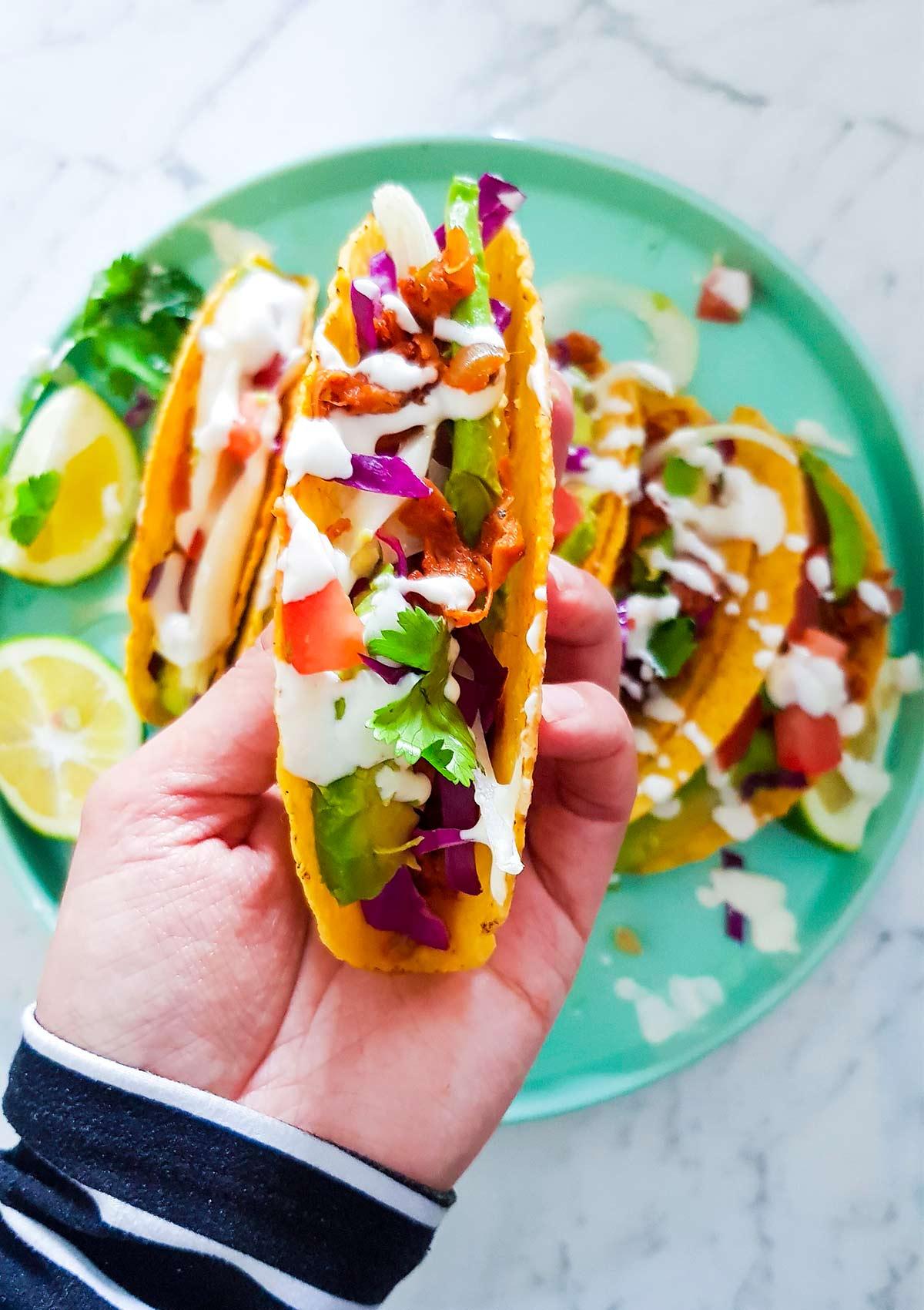 Holding jackfruit taco in hand